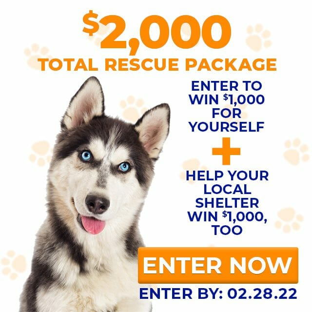 dog rescue charitable donation giveaway